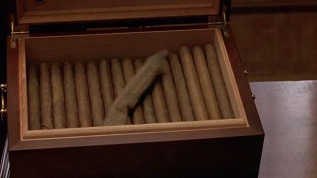 Mafia - cat tail in humidor box