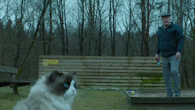 A Man Called Ove - Ragdoll cat sitting in foreground with Ove Rolf Lassgårdm in background