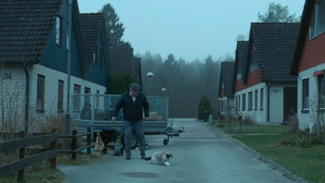 A Man Called Ove - Ove Rolf Lassgårdm trying to scare away Ragdoll cat