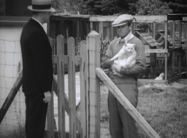 Maniac - rube neighbor greets inspector holding white Angora cat