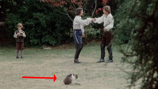 The Man in the Iron Mask - Philippe Richard Chamberlain and D'Artagnan Louis Jourdan practicing dancing with cat in foreground