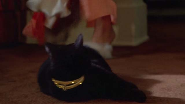 The Man With Two Brains - black cat almost stepped on by fuzzy slippers