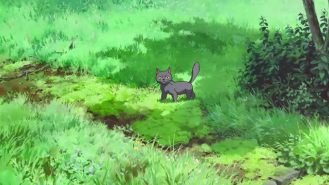 Mary and the Witch's Flower - gray cat Gib in woods