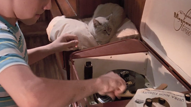 Matinee - cream colored cat sitting beside record player with Stan Omri Katz
