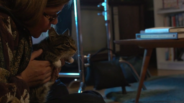 Meow - tabby and white cat actor Nala with trainer on set