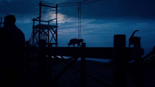 Mindhunters - cats on dock at night