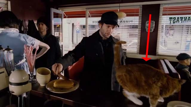 Mindhunters - orange and white cat on counter of diner