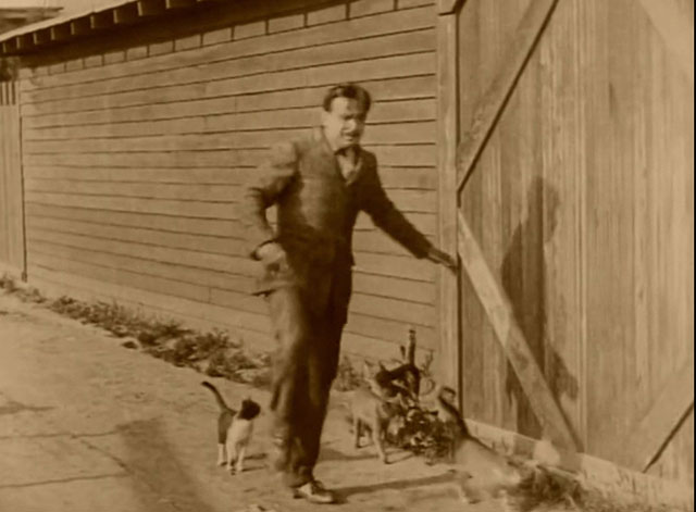 The Mollycoddle - cats following Richard Marshall Douglas Fairbanks down street