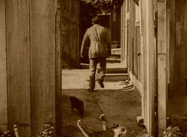 The Mollycoddle - cats following Richard Marshall Douglas Fairbanks to house