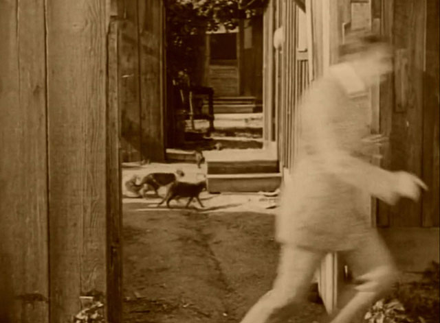 The Mollycoddle - Richard Marshall Douglas Fairbanks running away from cats in yard