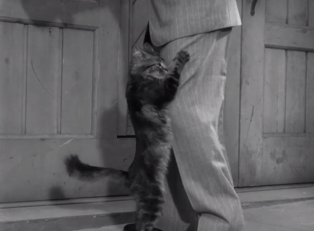 Monsieur Verdoux - Verdoux Chaplin going inside while cat eats food