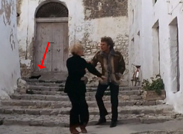 More - black cat on street behind Estelle Mimsy Farmer and Stefan Klaus Grünberg