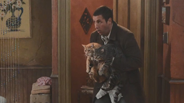 Mr deeds 2002 cinema cats mrdeeds09 m4hsunfo