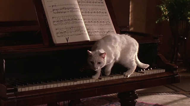 The Mummy - white cat on piano keys