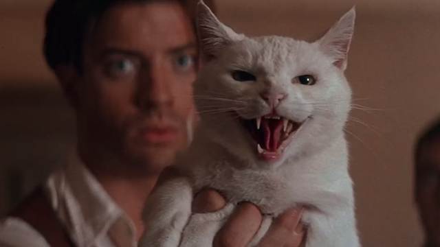 The Mummy - Rick Brendan Fraser holding up white cat