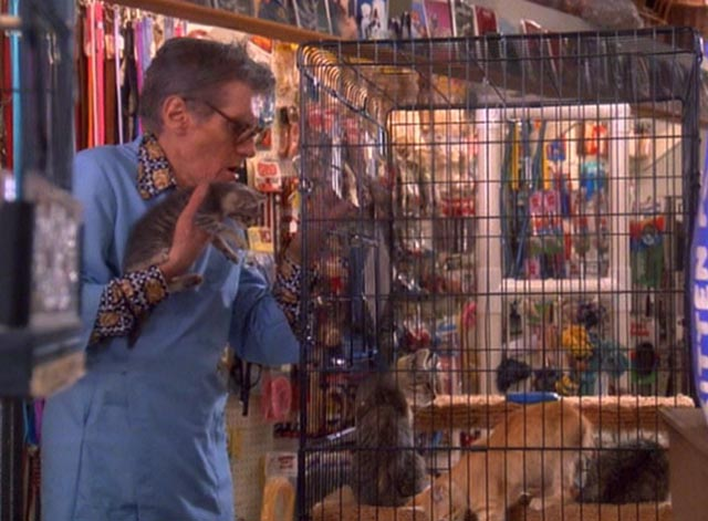 My Blue Heaven - Billy Sparrow William Hickey putting tabby kitten into cage of kittens in pet shop
