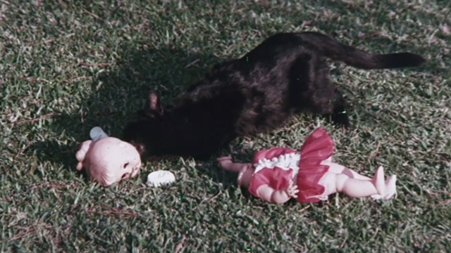 The Night of 1000 Cats - black cat licking at unattached head of doll