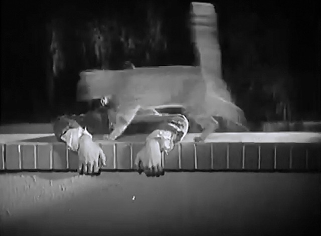 Night Owls - cat runs across Stan Laurel's arms