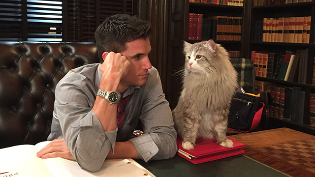 Nine Lives - Norwegian Forest Cat Mr. Fuzzypants with David Robbie Amell