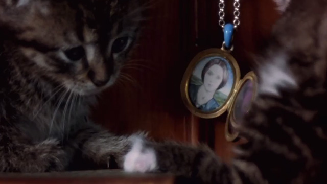 Nosferatu the Vampyre - tabby and white kittens with locket