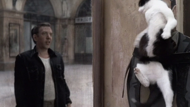 Novecento - 1900 - Attila Donald Sutherland backing away from tuxedo cat strapped to tailor shop sign with belt