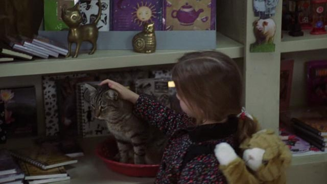 One Fine Day - Maggie Mae Whitman petting tabby cat on shelf