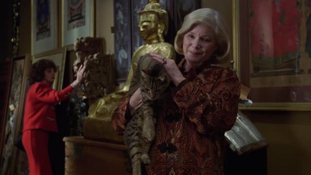 One Fine Day - Egyptian artifact store owner holding tabby cat