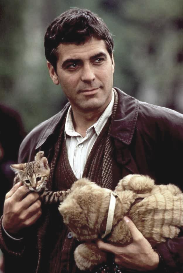 One Fine Day - Bob tabby kitten with Jack George Clooney publicity still