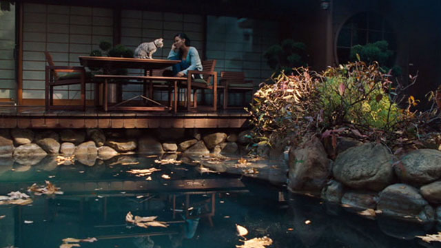 One Missed Call - Shelley Meagan Good in Japanese garden with Egyptian Mau cat