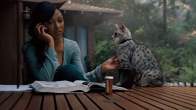 One Missed Call - Shelley Meagan Good sitting at table with Egyptian Mau cat