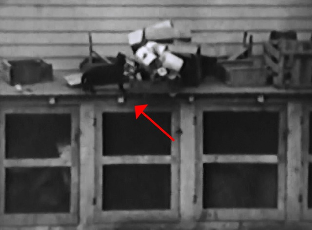 Our Gang - Shootin' Injuns - black cat on top of roof with stuff