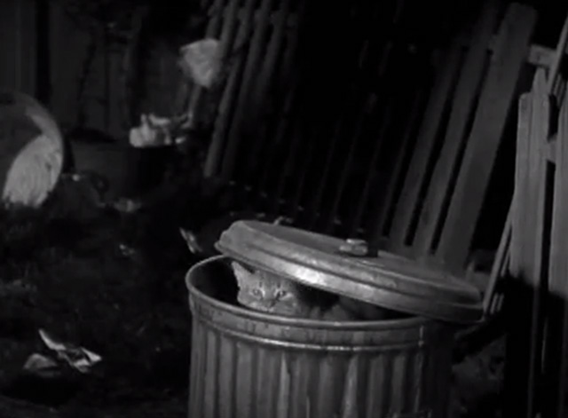 Our Gang - When the Wind Blows - tabby cat inside garbage can