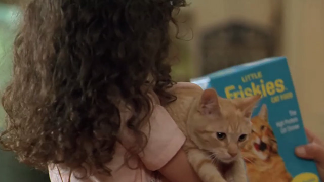 Paulie - Marie Hallie Eisenberg holding ginger tabby kitten with box of Friskies cat food