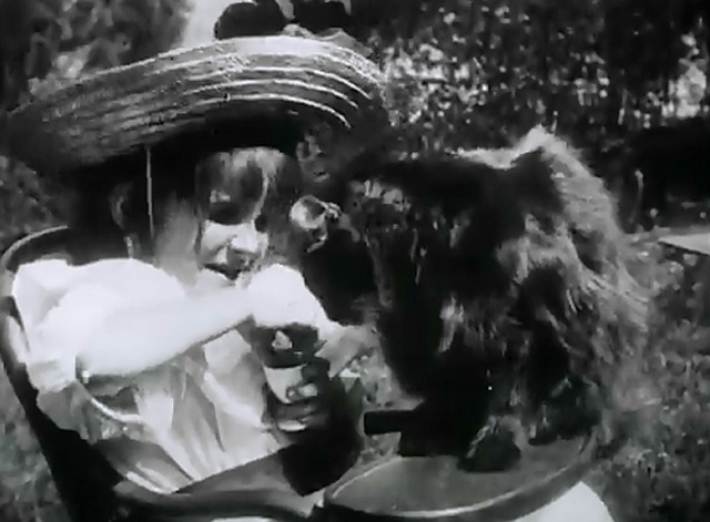 Le petite fille et son chat  - cat eating food from little girl's hand