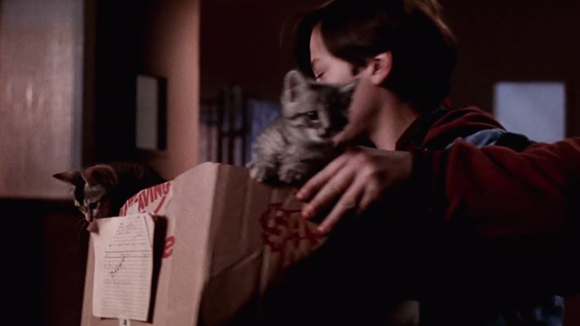 Pet Sematary Two - Jeff Edward Furlong moving box of tabby kittens