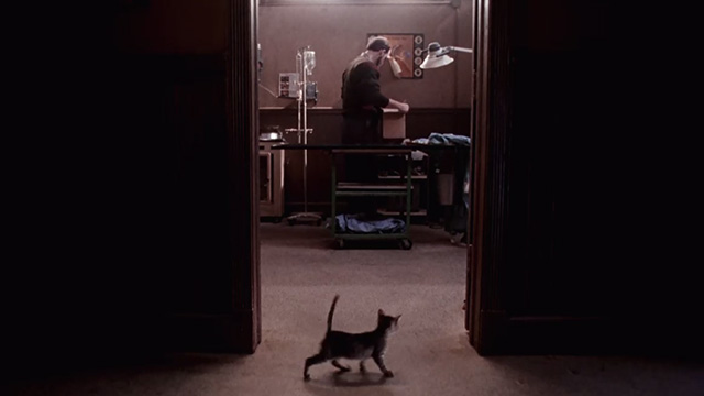 Pet Sematary Two - tabby kitten Tiger pausing outside doorway with Chase Anthony Edwards in background