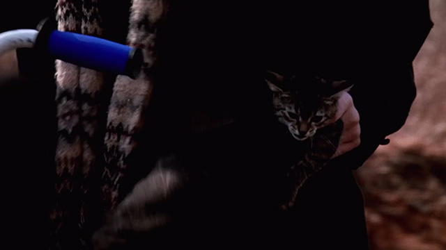 Pet Sematary Two - tabby kitten Tiger in pocket of Clyde on bicycle