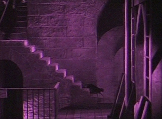 Phantom of the Opera silent - black cat walking down stone steps ahead of mob