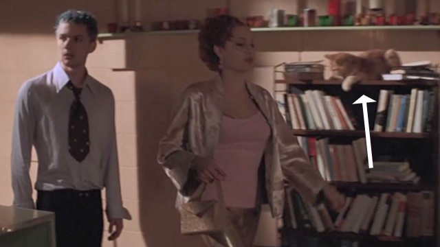Playing by Heart - Joan Angelina Jolie and Keenan Ryan Philippe entering apartment with one eyed ginger tabby cat Blanche on bookshelf