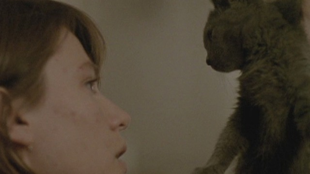 The Pleasure of Being Robbed - Eléonore Hendricks holding up gray kitten by scruff