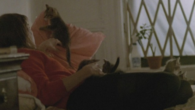The Pleasure of Being Robbed - Eléonore Hendricks on bed with kittens
