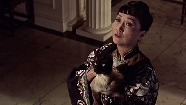 Portrait in Black - Tawny Anna May Wong holding Siamese cat Rajah