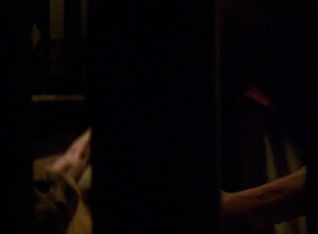 The Postman Always Rings Twice 1981 - orange tabby cat being picked up on stairway