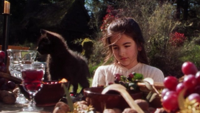 Practical Magic - black kitten on picnic table in front of Sally Camilla Belle