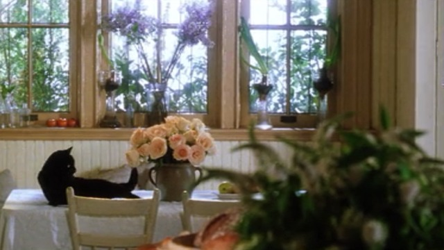 Practical Magic - black cat lying on table