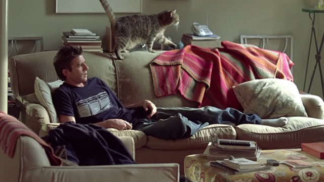 Prime - tabby cat walking on couch behind David Bryan Greenberg