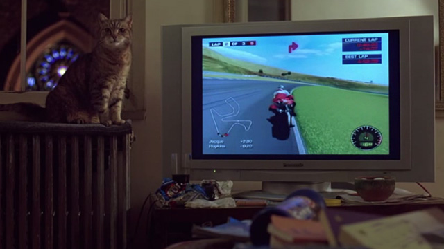Prime - tabby cat sitting beside television set