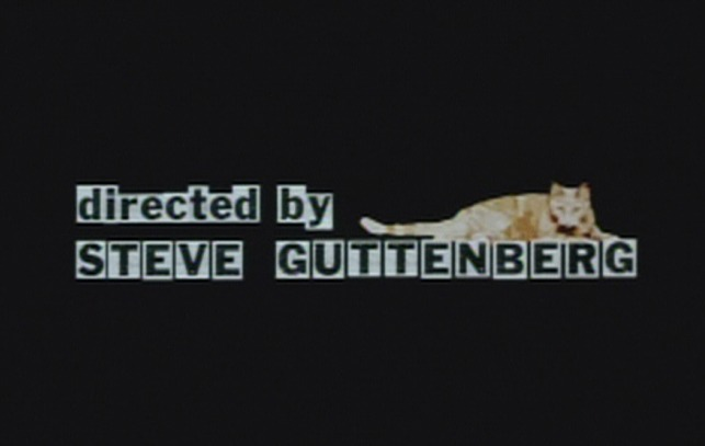 P.S. Your Cat is Dead! - cat over director credit