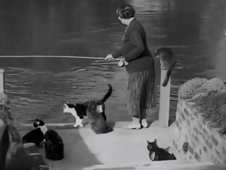 Pure and Simple newsreel - cats watch Mrs. King fishing on Thames