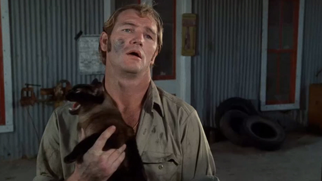 Race With the Devil - gas station attendant holding screeching Siamese cat with Warren Oates and Peter Fonda